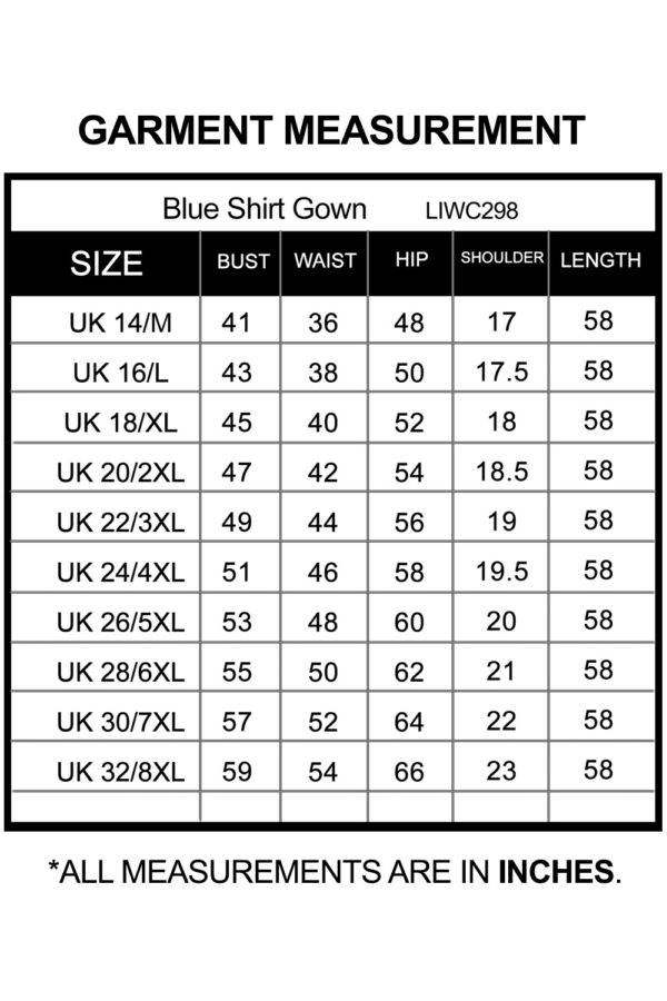 Blue Plus Size Shirt Gown_LIWC298