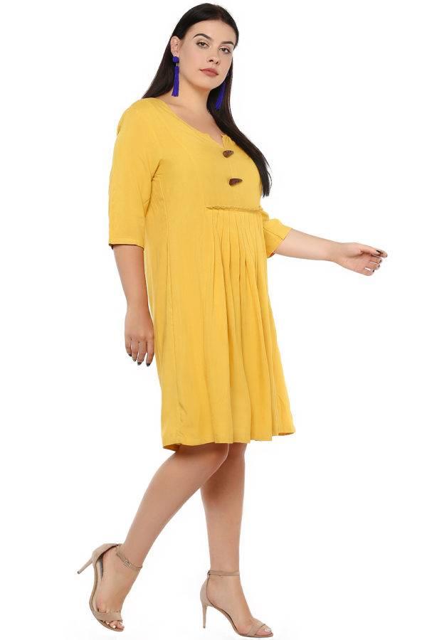 Mustard Flared Dress-4