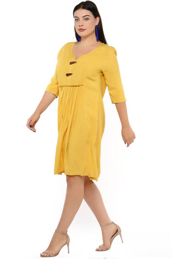 Mustard Flared Dress-5