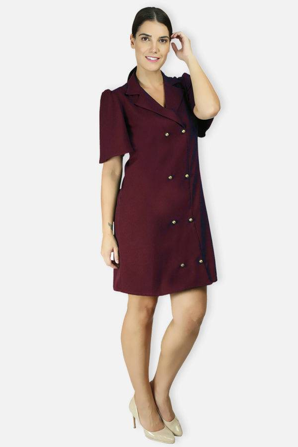 Wine Coloured Trench Dress6