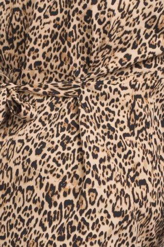 Leopard Print Dress1