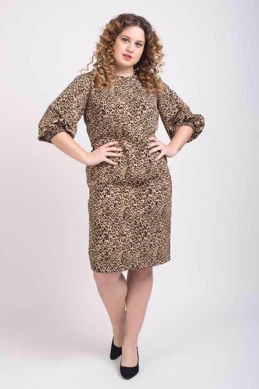 Leopard Print Shift Dress3